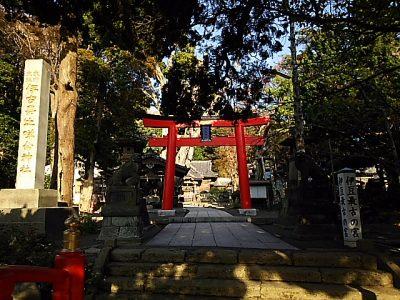 眼にご利益のある神社仏閣~静岡・白浜神社~