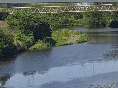 鴨池橋と富士山と鯉のぼり
