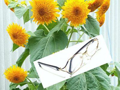 「小さいメガネが多いわね」と、お嘆きの方に、こんなパサパいかがでしょう。