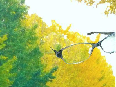 フォーナインズ NP-400  黄葉の季節
