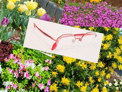 パサパはいつも花の季節