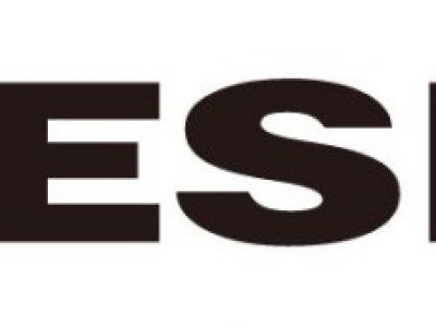 DIESEL(ディーゼル)サングラス